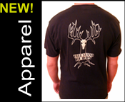 shirt_banner